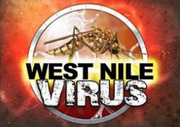 WestNileVirus